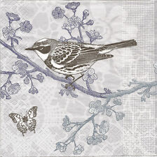 4 Documento unico per Tovaglioli decoupage Bird in una struttura ad albero farfalla