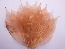 100 bronze skeleton leaves for crafts weddings scapbooks free post !