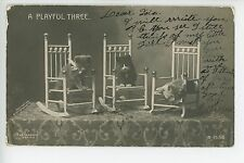 Cute Kittens on Rocking Chairs - Antique Photo RPPC Rotograph Cats ca. 1914