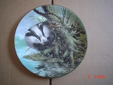 Wedgwood Collectors Plate I SPY From THE WATERS EDGE