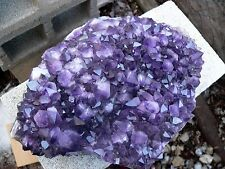 20LB HUGE AMETHYST PLATE OR CLUSTER DARK CRYSTAL A CENTER PIECE BEAUTY