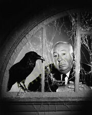 Alfred Hitchcock The Birds 8x10 Photo 004