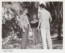 "Peter Graves in ""Bayou"" 1957 Photo Still"