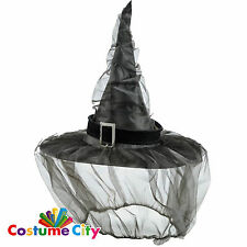 Adult Size Haunted Halloween Fancy Dress Party Witch's Hat with Net Veil