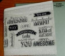 CTMH C1644 BEYOND AWESOME ~ AWESOME looks good on YOU, Ridiculously AWESOME