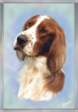 Irish Red & White Setter A6 Blank Card No 2 - Starprint