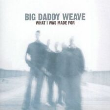 What I Was Made For, BIG DADDY WEAVE, New