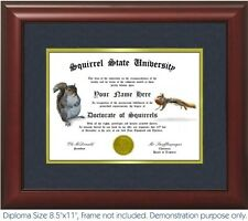 Squirrel Diploma - Personalized with your Name/Date- Best on eBay. Squirrels