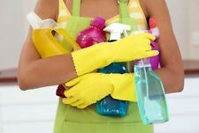 Domestic Cleaning Handy Start Up Guide & Business Plan With Templates Package