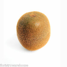 Artificial Kiwi 6cm realistic life size fake mock fruit