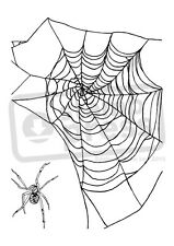 A7 'Spider & Web' Unmounted Rubber Stamp (SP004514)