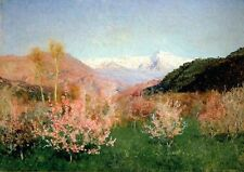 Oil painting Canyon Landscape with spring flowers and mountains Hand painted