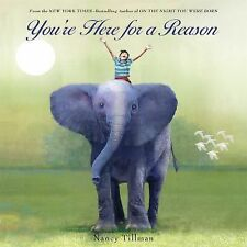 You're Here for a Reason by Nancy Tillman (2015, Picture Book)