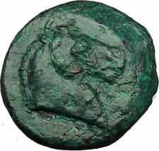 ANTIOCHUS I, SOTER Seleucid Possibly Unpublished Ancient Greek Coin i34351 HORSE