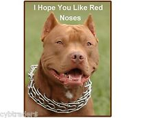 Funny Red Nose  Pit Bull Terrier Dog  Refrigerator / Tool  Box  Magnet