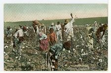 """""""Picking Cotton"""" Black Americana Sharecroppers Antique PC African American UDB"""