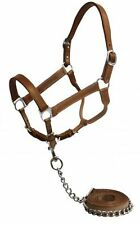 WESTERN OR ENGLISH HORSE MEDIUM BROWN LEATHER HALTER W/ MATCHING LEAD AND CHAIN