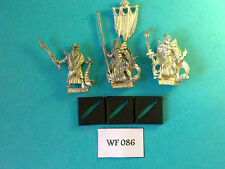 Warhammer - Dark Elf - Black Arc Corsairs Command Group x3 - Metal WF86