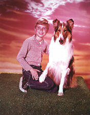 JON PROVOST UNSIGNED PHOTO - 5800 - LASSIE