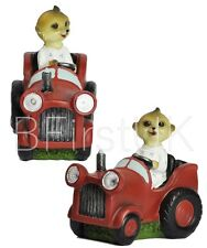 Baby Meerkat Driving Car LED Solar Light Lamp Outdoor Garden Lighting Ornament