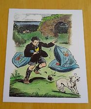 THE FAMOUS FIVE POSTCARD ~ THE BOY, THREE CUSHIONS AND A DOG ~ ENID BLYTON ~ NEW