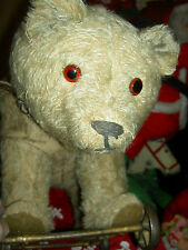 Large antique, ride-on, mohair teddy BEAR on iron wheels, glass eyes & collar