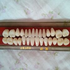 Porcelain Teeth Alloy-Pin Materials Dental Shade-Guide Tooth Dentures IUK