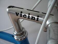 Vintage VICINI Road Bike Pantos Rennrad Campagnolo Gran Sport Group VGC !!!!