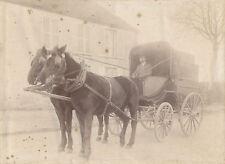 Carriole voiture avec chevaux tirage sur papier citrate v. 1910-1920