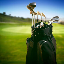 PREMIUM DOMAIN NAME FOR GOLF RENTAL CLUB BUSINESS...TOP KEYWORDS IN GOOGLE