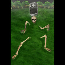GIANT GROUND BREAKING SKELETON OUTDOOR HALLOWEEN PROP. HAUNTED HOUSE. GRAVEYARD