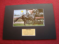 BLACK CAVIAR - HORSE TRAINER PETER MOODY GENUINE SIGNED PHOTO MOUNT DISPLAY- COA