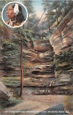 Illinois postcard Starved Rock Wildcat Canyon State Park View wild cat