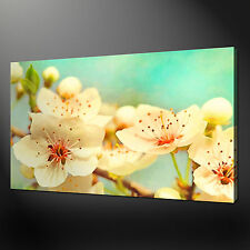 "CHERRY BLOSSOM FLOWERS TEAL MODERN PICTURE BOX CANVAS PRINT 20""x16"" FREE UK P&P"