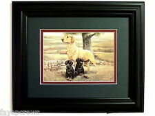 GOLDEN LAB DOG PICTURE BLACK LABRADOR RETRIEVER DUCK HUNTING FRAMED MATTED  8X10