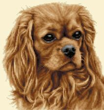 CAVALIER KING CHARLES SPANIEL dog cross stitch kit *All materials supplied