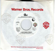 CHICAGO: ALONG COMES A WOMAN / WE CAN STOP THE HURTIN 45 RPM PETER CETERA AOR