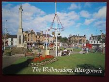 POSTCARD PERTHSHIRE BLAIRGOWRIE - THE WELLMEADOW