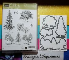 Stampin Up LOVELY AS A TREE & Matching Dies By Dave Oak Maple Line of Trees