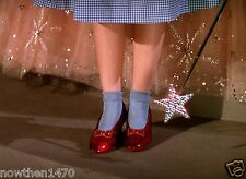 918 The Wizard Of Oz Color 8.5 x 11 Glossy Picture Photo NOT 8 X 10