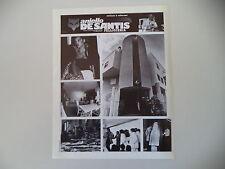 advertising Pubblicità 1981 ANIELLO DE SANTIS PELLICCE PELLICCERIA - SALERNO