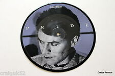 "Robert Palmer - Pride - (Picture Disc 7"",1980s,45rpm) - PWIP 6833"