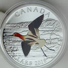 2016 $20 Colorful Birds of Canada: American Avocet .9999 Pure Silver Color Proof