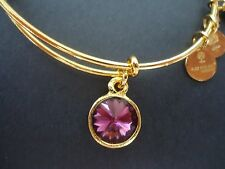 Alex and Ani February Birthstone AMETHYST Gold Charm Bangle NWT Card & Box