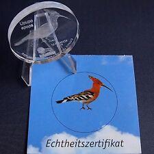 Glasmünze Kongo 10 Francs 2004 Wiedehopf Glas Gedenkmünze + Zfk