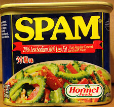 SPAM Hormel Foods International Japanese 20% Less Sodium 30% Less Fat Label