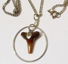 pendentif chaine bijou vintage couleur argent nature mer véritable  *1654