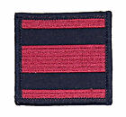 Royal Engineers Velcro Backed Tactical Recognition Flash TRF Badge - TF201