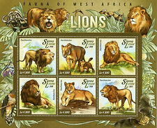 Sierra Leone 2015 MNH Lions Fauna of West Africa 6v M/S Wild Animals Stamps