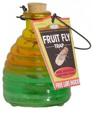 Springstar Glass Fruit Fly Trap, Kitchen Insect Bug Killer, New